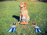 Storm and Trophy.